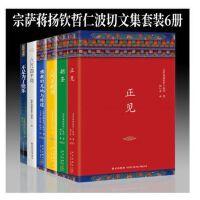 宗萨蒋扬钦哲仁波切文集6册:正见+佛教的见地与修道+朝圣+不是为了快乐+人间是剧场+八万四千新星立品