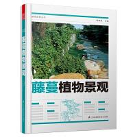 植物造景丛书――藤蔓植物景观(一套偏重于绿化设计的植物搭配手册,全7册)