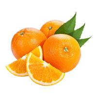 现摘橙子 江西赣南脐橙 精品果 生鲜水果甜橙 含箱5斤装 70-75mm