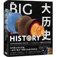 新思文库・DK大历史:从宇宙大爆炸到我们人类的未来,138亿年的非凡旅程