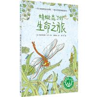 蜻蜓昆丁的生命之旅