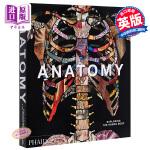 【中商原版】解剖学:探索人体 英文原版 Anatomy: Exploring the Human Body