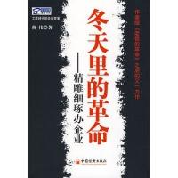 【RT5】冬天里的革命:精雕细琢办企业 曾伟 中国经济出版社 9787501790098