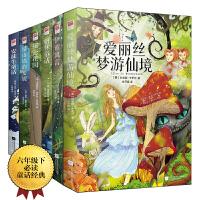 童话故事:爱丽丝梦游仙境+格林童话+秘密花园+伊索寓言+安徒生童话+绿山墙的安妮(全六册)