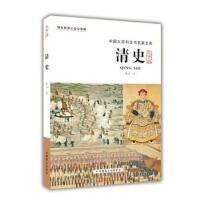 清史 戴逸 中国盲文出版社
