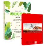 神奇的的世界:聪明的植物+二十四节气草稿本(套装共2册)