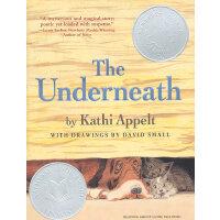 The Underneath 《木屋下的守护者》又译《真相临界点》 2009年纽伯瑞银奖小说 ISBN 9781416