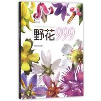 野花999/自然观察