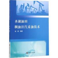 圣湖油田稠油注汽采油技术 中国石油大学出版社