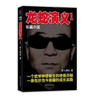 梦入神机-龙蛇演义1(混沌世道的血搏 真实武学的风采 现实商界的鏖战)