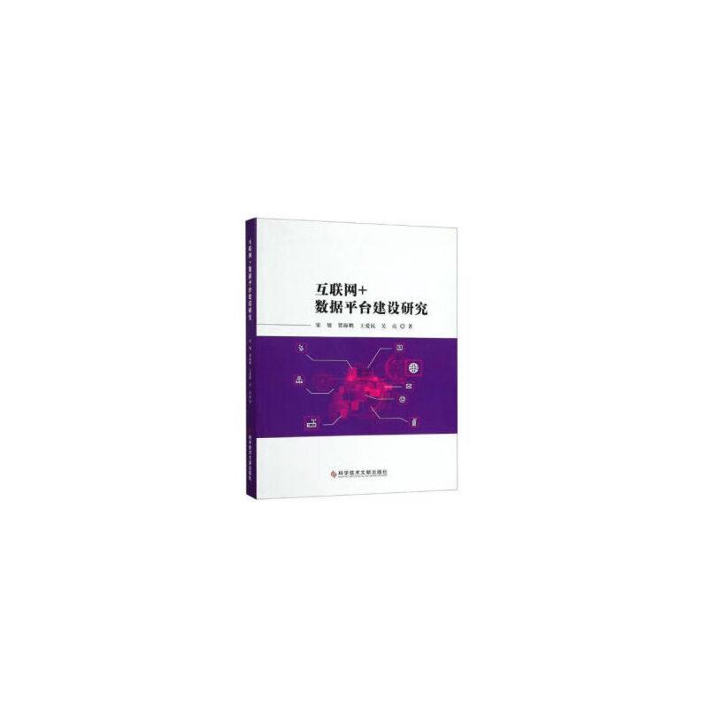 互联网+数据平台建设研究 PDF下载